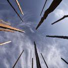 her-vertical-retain-us-architects-cruz-mandiola-elton-leniz-8